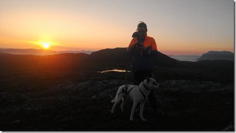 Solnedgang på bufjellet